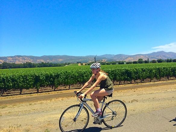 Bicicletta, vigneto, donna in bici