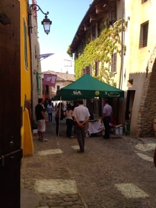 Monforte d'Alba, Barolo, Wine