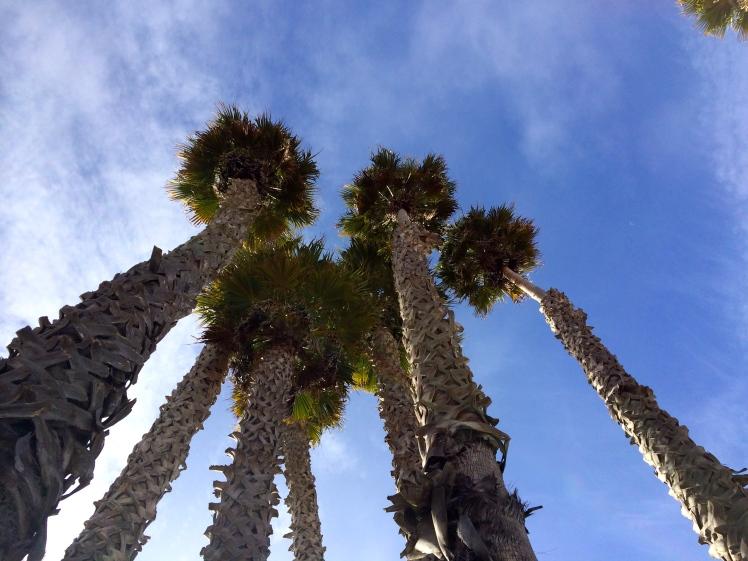 California, CA, road trip