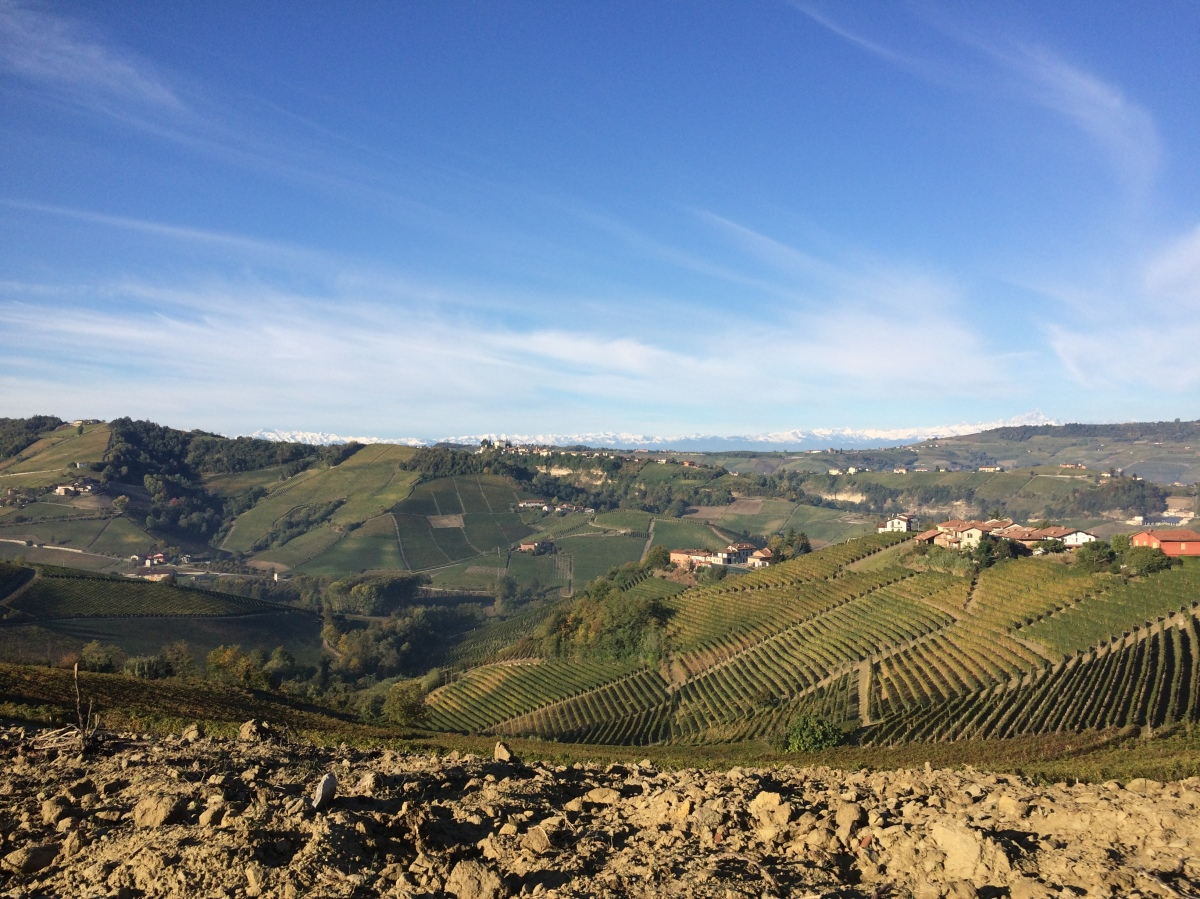 Vini di Langa in degustazione a Villa Quaranta di Pescantina (Verona), il 20 novembre